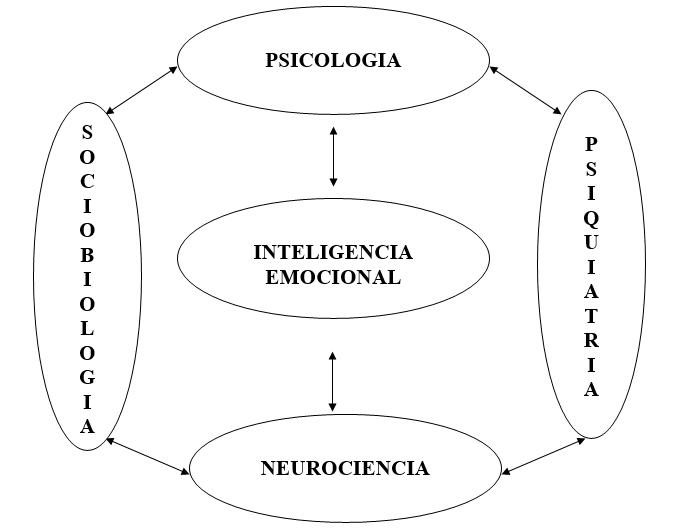 Campos de investigación de la Inteligencia Emocional