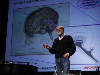 Coaching ejecutivo y la neurociencia