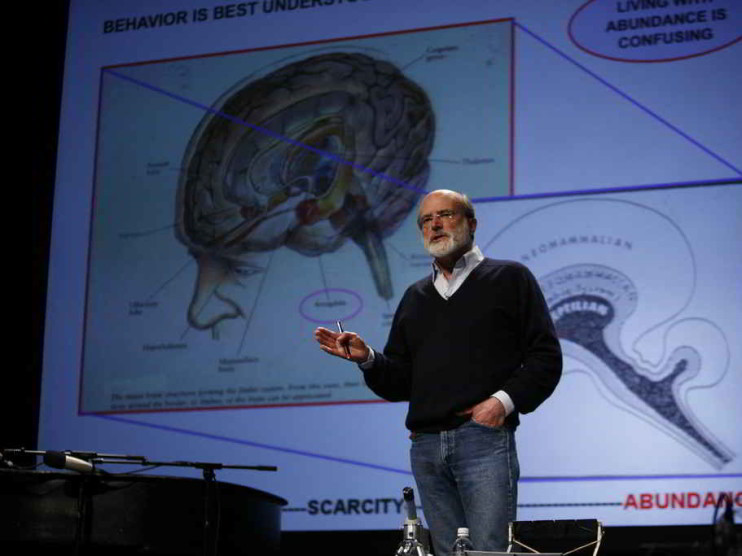 Coaching ejecutivo y la neurociencia