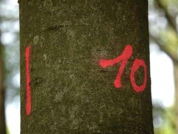 10 puntos para verificar si tu sitio de membresía tendrá éxito