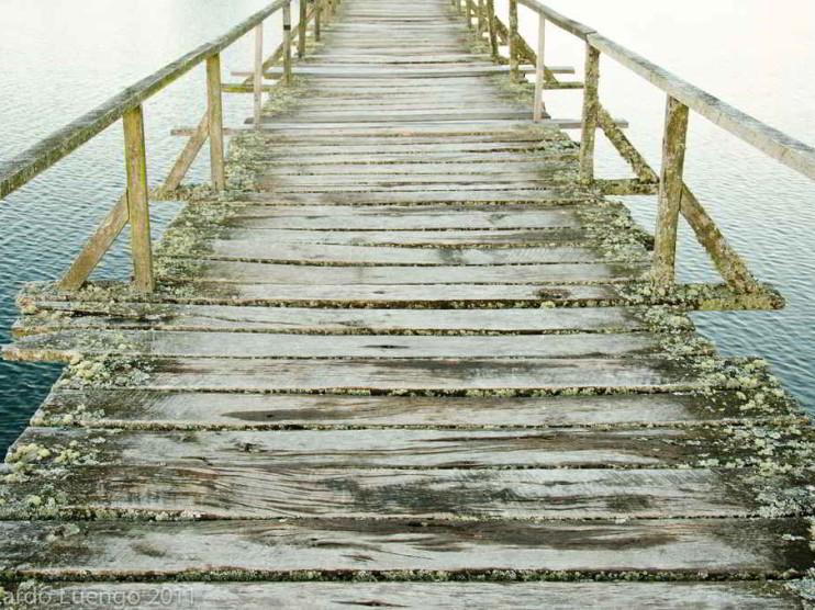 6 pasos para saber en qué emprender