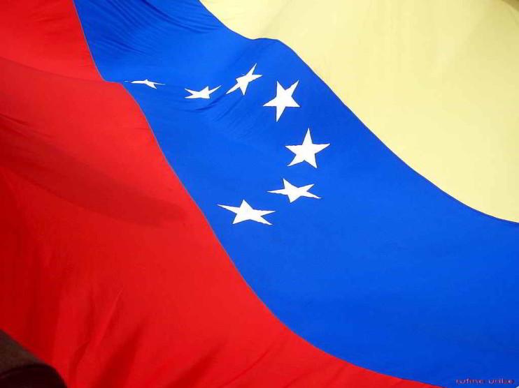 La función ejecutiva de los municipios en Venezuela