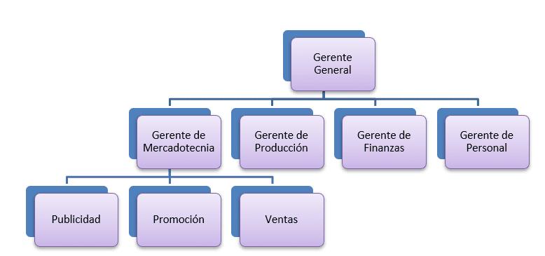 Organización Lineal - Funcional