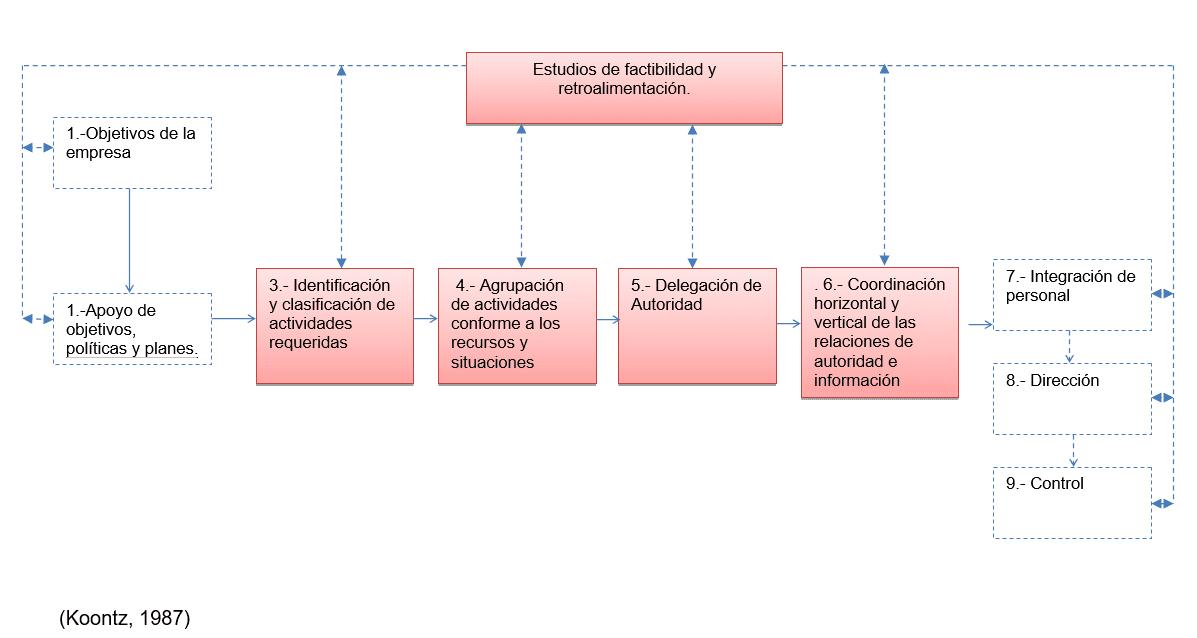 Proceso de la Organización