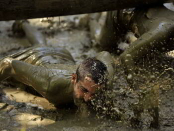 Resiliencia: cómo se manejan el fracaso y la adversidad