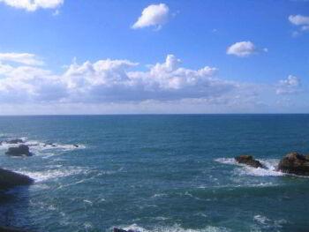 Ensayo sobre la estrategia del océano azul