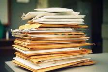 Burocracia según Charles Perrow