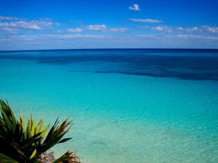 Estrategia del océano azul en las empresas de hoy
