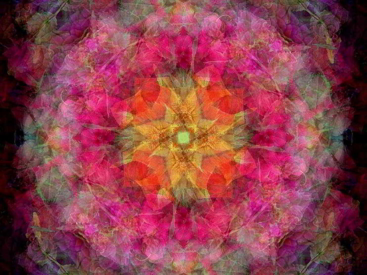 Enseñanza de la inteligencia espiritual