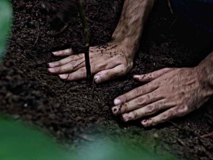 Responsabilidad social empresarial: ¿filantropía o compromiso?