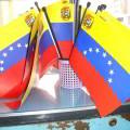 Los concejales y las competencias parlamentarias en Venezuela