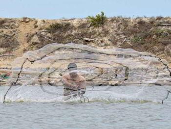 Impacto económico de las cooperativas pesqueras en el Estado Vargas, Venezuela