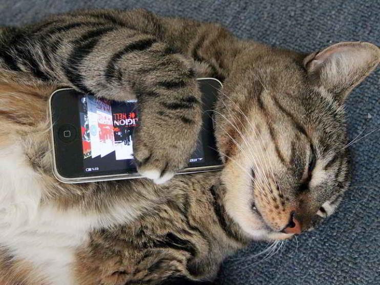 Uso de la tecnología y la información de forma irracional