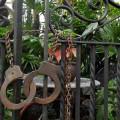 Garantía del auto de formal prisión en México