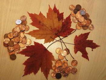 Manejo de las finanzas en el hogar. Ensayo
