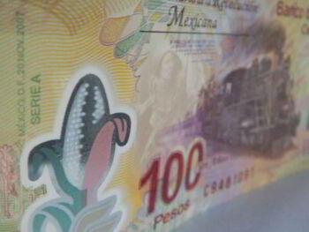 Manejo financiero de las contribuciones en México. Ensayo