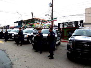 Función de seguridad pública en México. Ensayo