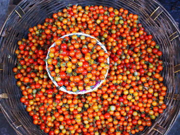 Productos de exportación de Chiapas México