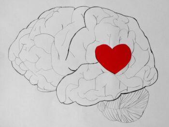 Importancia de la inteligencia emocional en las organizaciones. Ensayo