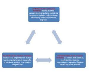 Análisis de la Organización de Aprendizaje