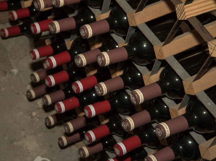 Curso de Enología. Ciencia, arte y técnica de producir vino