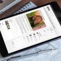 6 nuevas tendencias de diseño para sitios web