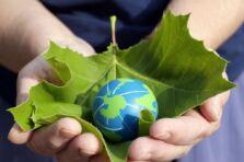 Globalización y medio ambiente: consecuencias