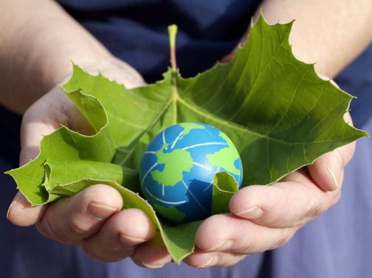 Consecuencias de la globalización en el manejo del medio ambiente