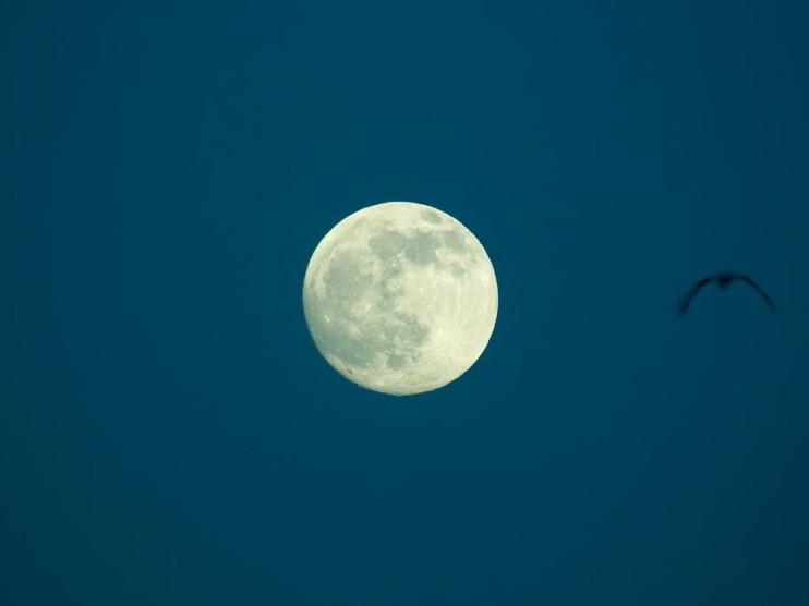 El arquero que flechó la luna. Historia para la reflexión personal
