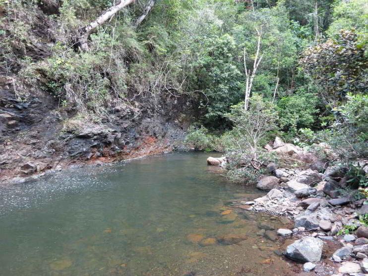 Control de proyectos en un parque natural de Cuba