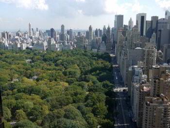 Beneficios de tener más árboles en las ciudades