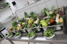 Planeación y elaboración de menús en servicios de alimentación