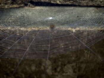 Concepto de la web profunda o deep web