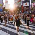 Nemawashi. Concepto Japonés para la toma de decisiones en la empresa