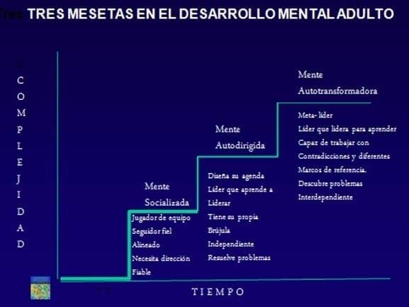 La trayectoria del desarrollo mental en la edad adulta