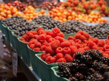 Errores habituales en marketing agropecuario y hortofrutícola