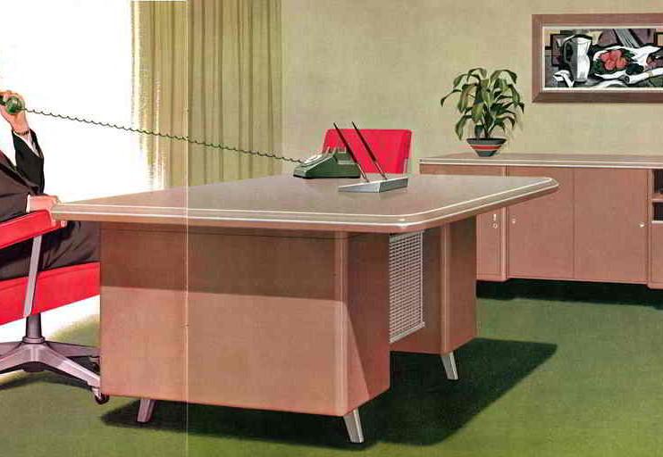 Competencias directivas en la gestión de una Organización