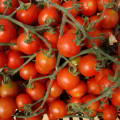 Ecoeficiencia empresarial enfocada en la producción de productos orgánicos