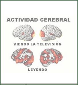 Actividad Cerebral Leyendo y Viendo Televisión