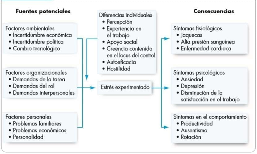 Modelo de estrés. (Robbins & Judge, 2009).