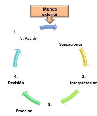 La rueda de la conciencia (Zepeda, 2003).