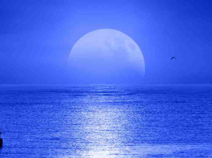 La empresa y la estrategia del Océano Azul