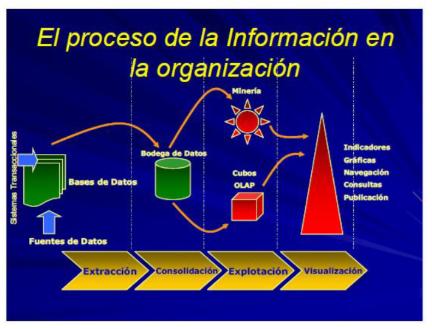 Proceso de la información en la organización y sus cuatro etapas. (Davila, pág. 3)