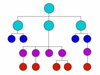 Estructura organizacional y sus herramientas