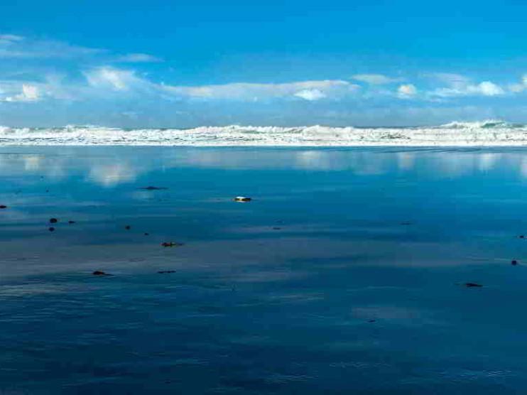 Innovación en valor y estrategia del Océano Azul. Ensayo