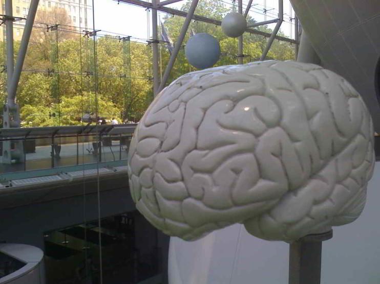 Neuroeconomía y decisiones intertemporales