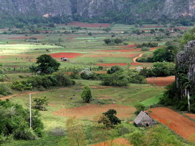 Contabilidad y Auditoría Medioambiental en Cuba