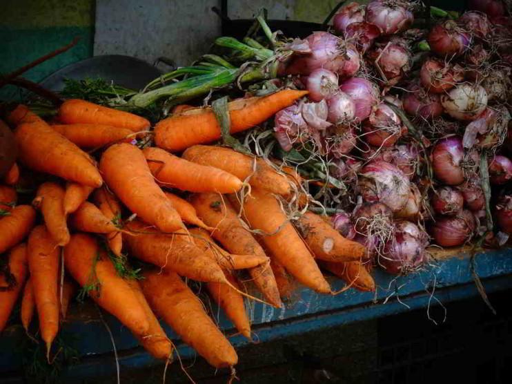 Herramienta informática para la evaluación de la producción agrícola en Cuba