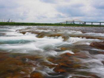 Reseña del video «Aguas Rápidas» de Franklin Covey