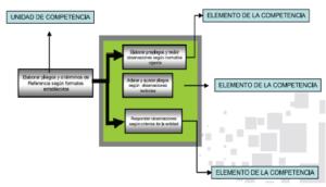 Elemento de Competencia Laboral